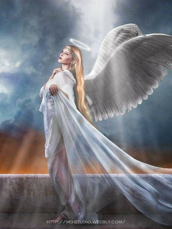 2227 best spiritual love light and blessings images on