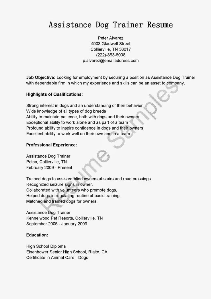 24 best Resumes images on Pinterest Creative resume, Resume - resort personal trainer sample resume