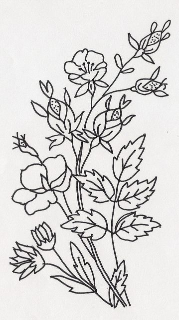 COLOUR IT, SEW IT, TRACE IT, ETC. Flowers2 | Flickr - Photo Sharing!