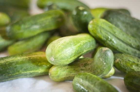 Make Old-Fashioned Brine Fermented Pickles Like Your Great Grandmother | Simple Bites I wonder if this is the recipe Dottie used to use?