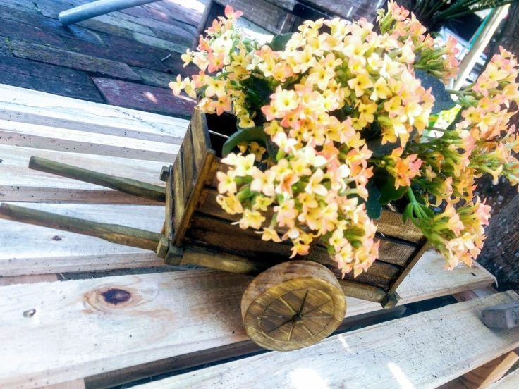 Carretinha para floreira