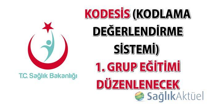 KoDeSis (Kodlama Değerlendirme Sistemi) 1. Grup Eğitimi Düzenlenecek