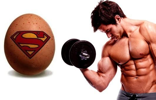 BodyBuilders Food Egg is an important Protein Source | Fit Topic