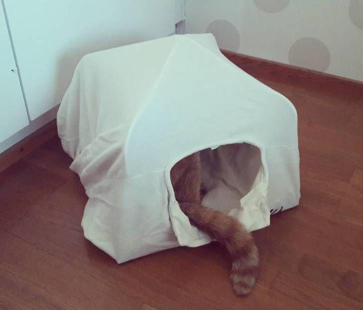 T-paidasta ja henkareista tehty teltta omalle kissalleni