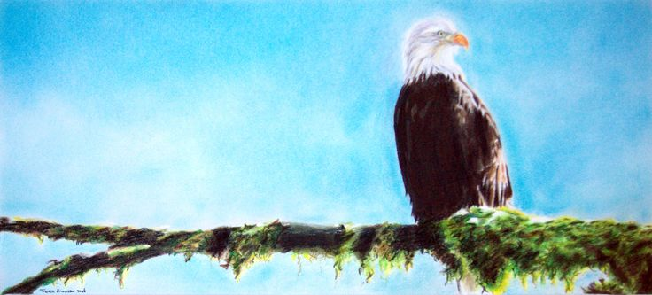 Eagle on branch. Pastel and colour pencil drawing by Fiona Ansink