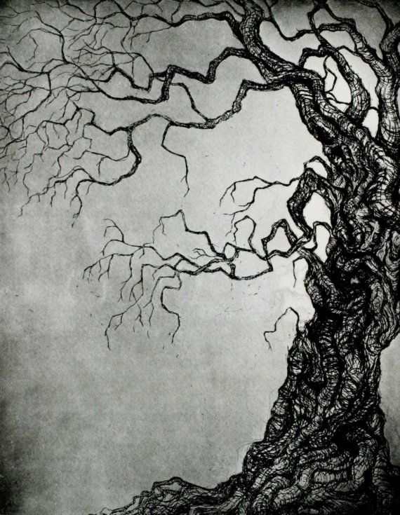 Tree ORIGINAL ETCHING Intaglio print LIMITED Edition by Zoe Stewart (17.4cm x 22.2cm)