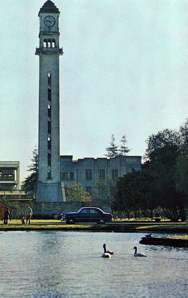 Campanil de la Universidad de Concepción , con la laguna de los cisnes o llamada de los patos