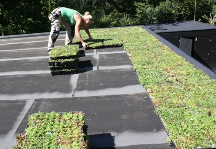 DIADEM - färdiga systemlösningar för gröna tak