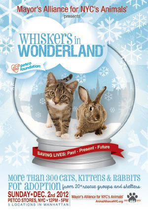 The Whiskers in Wonderland holiday pet adoption event, hosted by the Mayor's Alliance for NYC's Animals, features hundreds of cats, kittens, and rabbits just waiting to be welcomed into new homes. Sunday, December 2, 2012