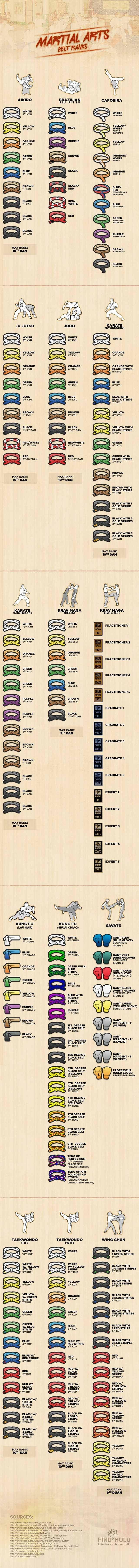 15 Martial Arts Belt Rankings Infographic. I don't know karate, I know Ka-RAZY!