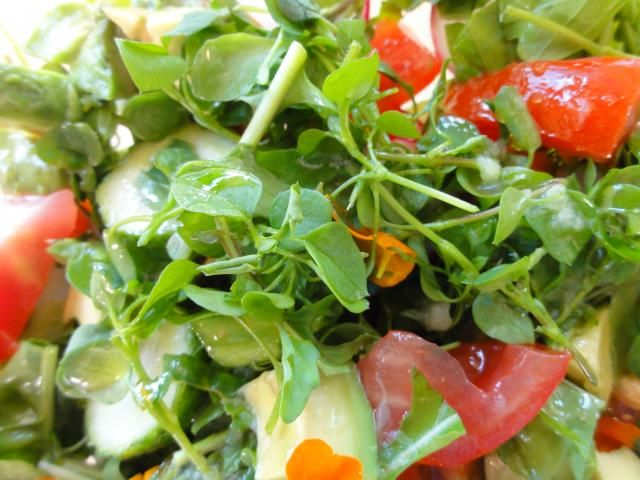 Tyúkhúr salátába - Koleszterincsökkentő