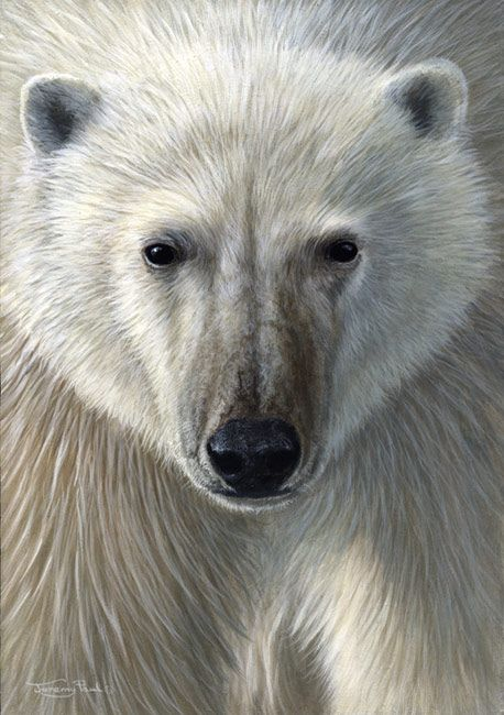 <3 <3 Polar Bear, by UK Wildlife Artist Jeremy Paul..Ooohhhh..this is so far beyond stunning PERFECTION. <3 <3