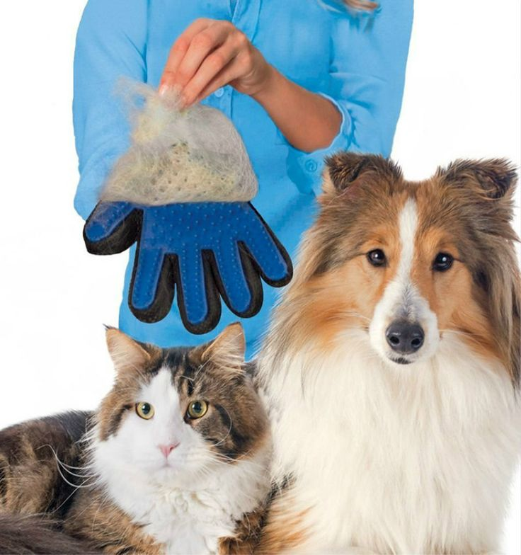 Deshedding Tool Glove //Price: $11.99 & FREE Shipping //     #cats #ilovemycat