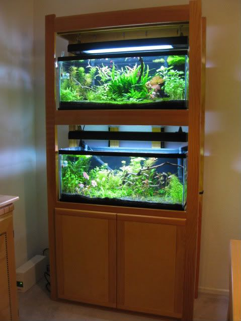 105 best pets aquarium stands and racks images on