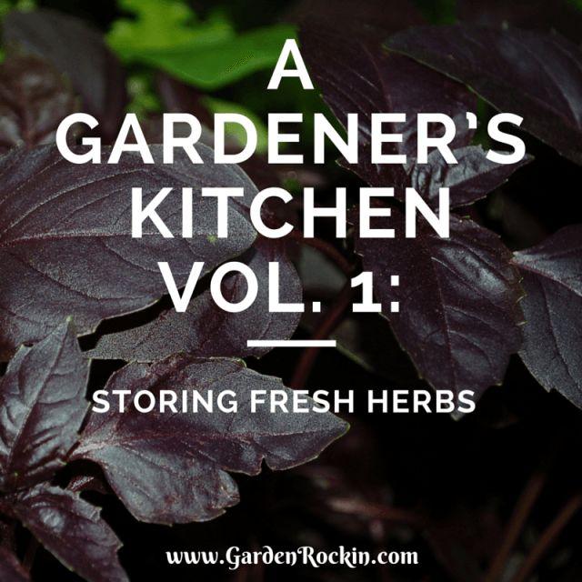 The How To's of storing fresh herbs from the garden ~ via GardenRockin.com