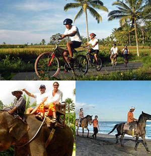 http://www.rrbalitours.com/bali-activities-tour