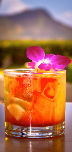 Shake things up this weekend and try a new cocktail!!! Cachaca Samba using LEBLON Cachaça rum!!! http://lushworthy.com/2012/05/26/halekulani-summer-cocktails/