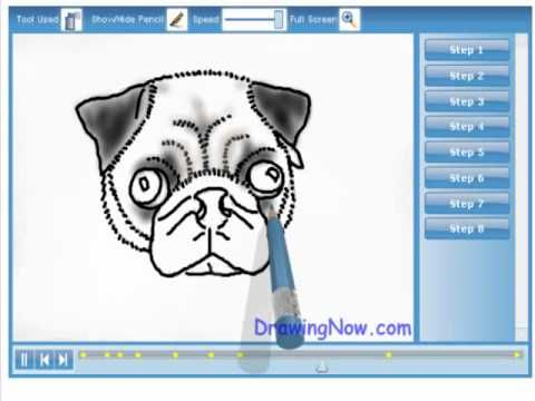 how to draw a pug step by step easy
