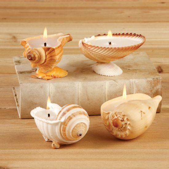 velas com conchas                                                       …