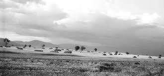 Θεσσαλικός κάμπος._Χρονολογία 1970._Φωτογράφος Τάκης Τλούπας
