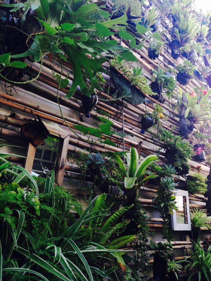 #2 Rooftopgarden_Durban_SouthAfrica_byJesseDk