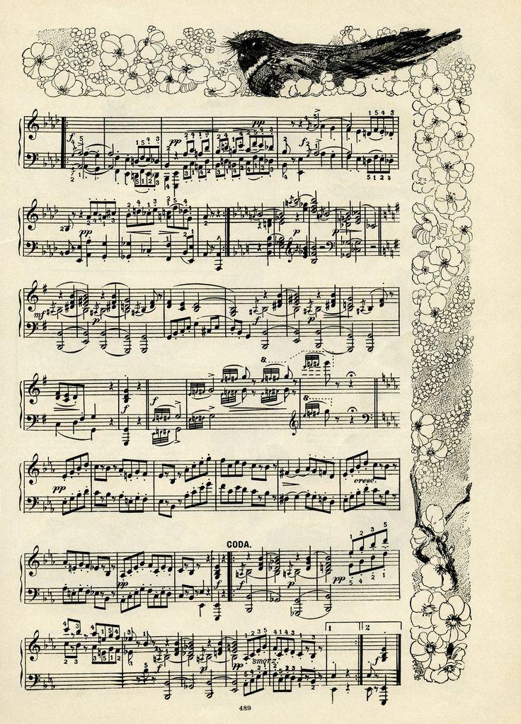 De Brownies Gavotte, vintage bladmuziek, SG Pratt, suite van brownie dansen, uil vogel bloemen clip art