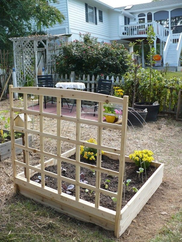 Best Vegetable Trellis Images On Pinterest Garden Trellis - Vegetable garden trellis ideas