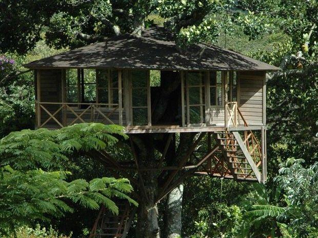 Sonho de dormir em uma Casa da Árvore - Lendas do Capão Pousada no Vale do Capão - Palmeiras - Bahia - Brasil
