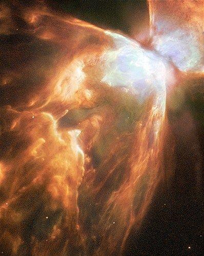The Bug nebula (NGC 6302 has impressive walls of compressed gas, with a dark torus surrounding the inner nebula (© NASA/Reuters)
