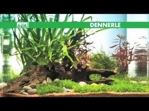 Macenauer TV - Zakládání funkčního akvária - Dennerle: Akvaristou snadno a rychle (CZ) - YouTube