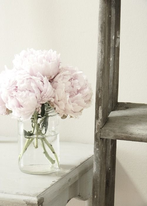 white peonies, my all time favourite flowers!: White Flowers, Gifts Ideas, Books Online, Pale Pink, Black Flowers, Wedding Flowers, Vintage Ladder, Fresh Flowers, Pink Peonies