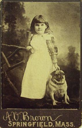 I Carlini nell'epoca vittoriana 1880. Victorian Pug