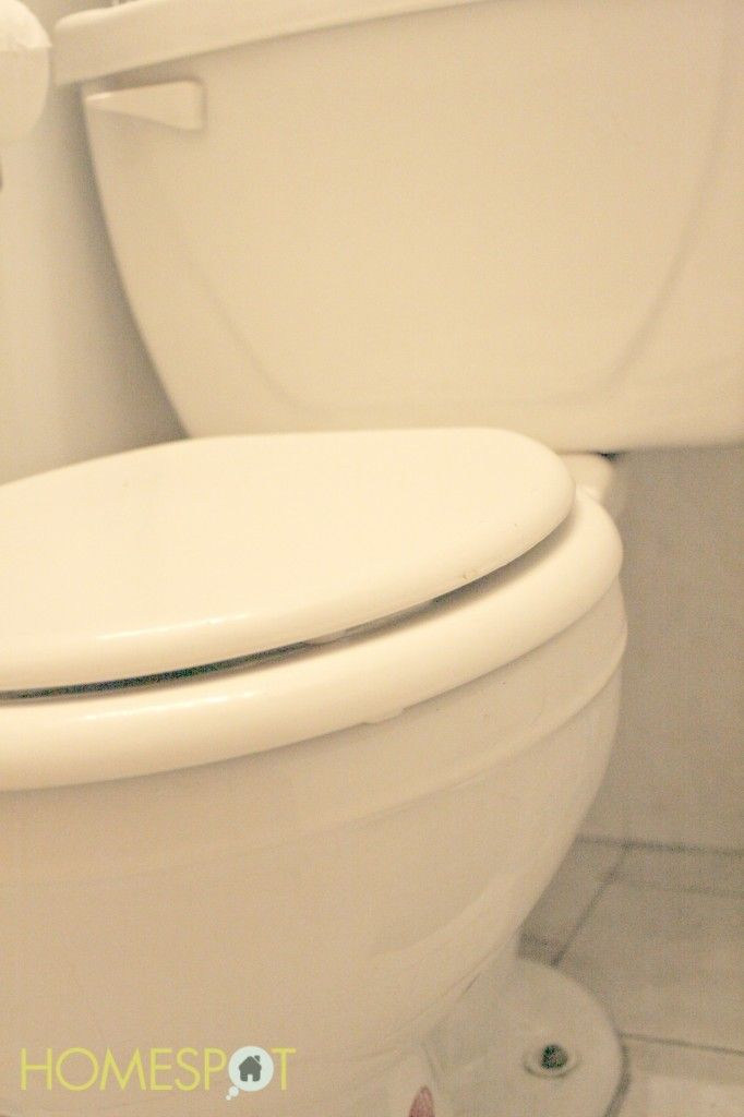 how to get rid of mold on the toilet
