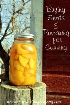 Buying Seeds Online & Preparing for Canning Season. Great lists that tell you how make plants you need to grow per person in yoru household!