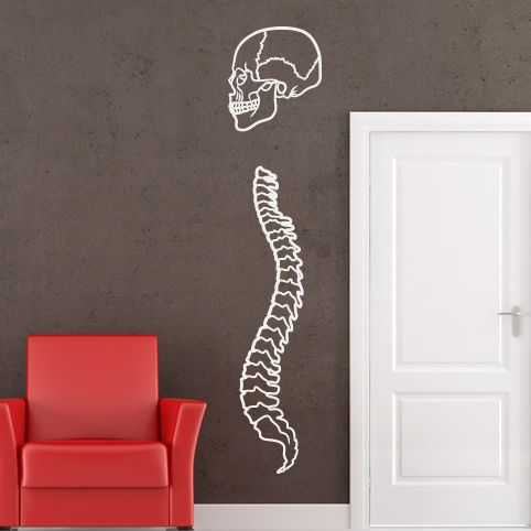 Skull and Spine Bones Wall Art Sticker Wall Decal Transfers | eBay