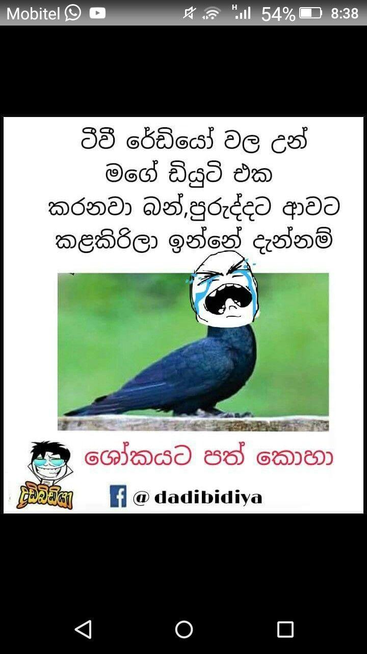 Pin By Hiruupeksha On Jokes Jokes Quotes Jokes Memes