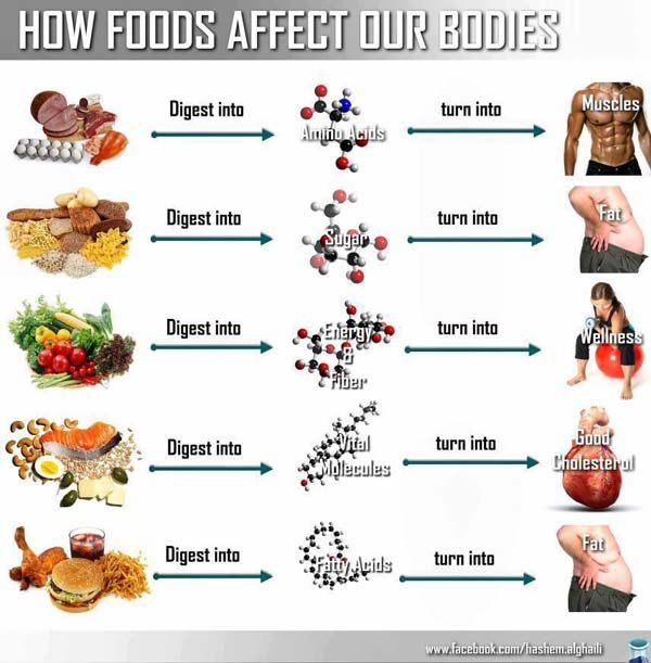 Here is an infographic that shows how different foods affect our bodies. These foods include amino acids, sugars, fiber, vital molecules, and fatty acids. #fitness #foods
