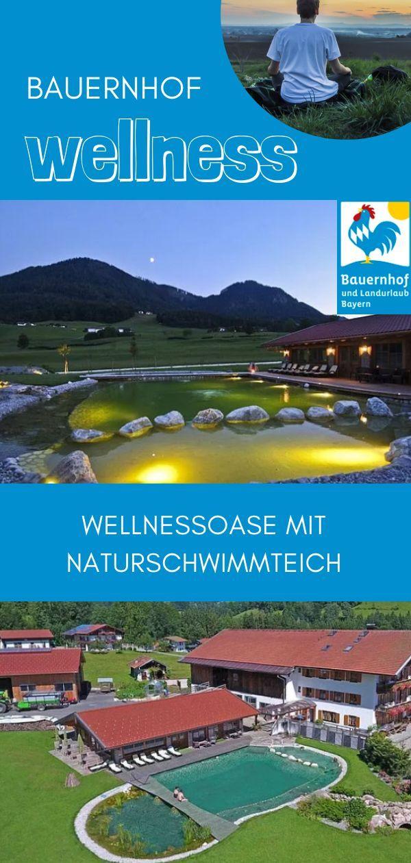 Gastgeber In 2020 Urlaub Wellnessurlaub Und Urlaub Bayern