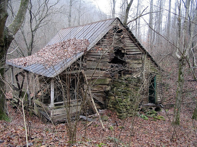 46 best old cabins in the woods images on pinterest home for Small survival cabin