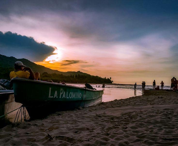 Palomino, Guajira