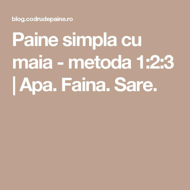 Paine simpla cu maia - metoda 1:2:3  | Apa. Faina. Sare.