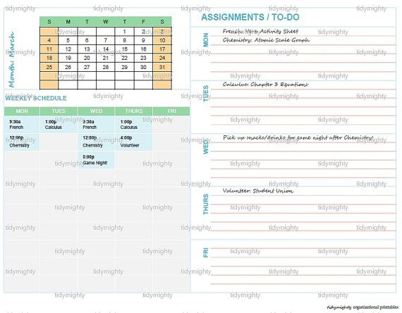 Student Schedule Planner / Organizer Back to School  by tidymighty, $3.50