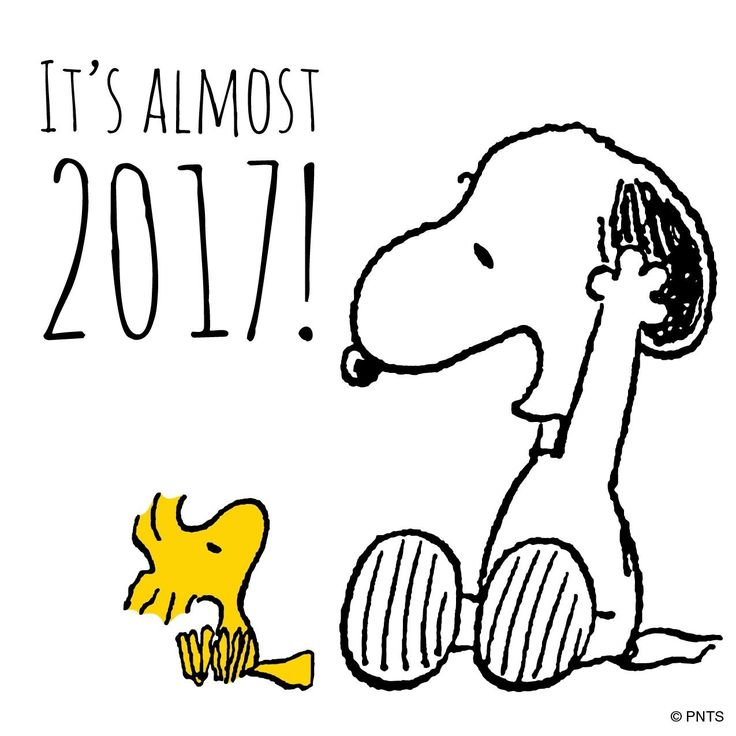 It's almost 2017! Snoopy and Woodstock are ready for New Years Eve❤