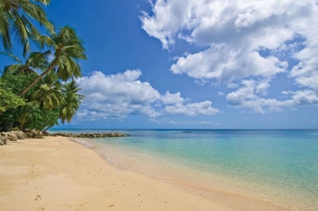 St Peter, Barbados.