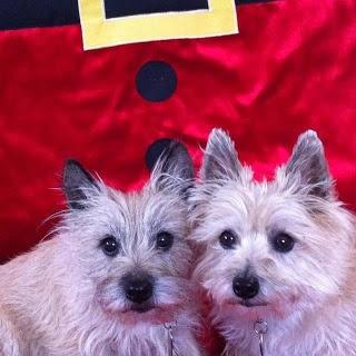 CPCRN:  Kayla and Sadie