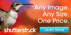 Shutterstock - Download unlimited stock photos!