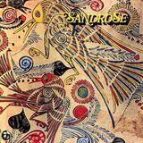 Sandrose [LP] - Vinyl