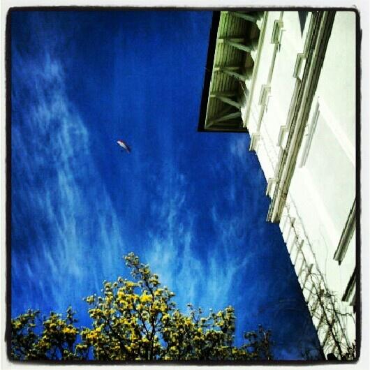 Paraglider over the Villa Modiva
