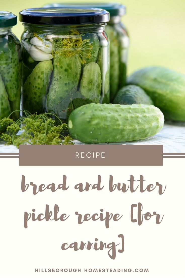 This super simple, delicious Bread and Butter pickles recipe for canning is sure to be a hit with your family! Sweet and sour, they're great to munch alone, or in a sandwich. This recipe makes 4 pints. | Hillsborough Homesteading