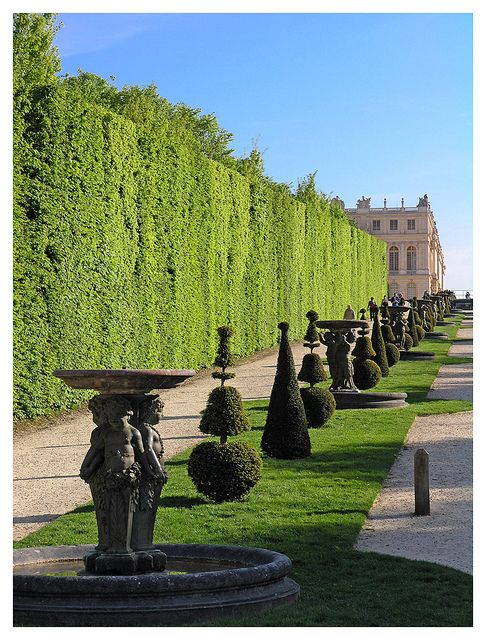 17 best images about topiary on pinterest gardens lake for Garden design versailles
